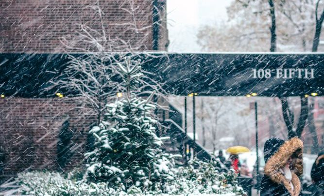 Hvilken vinterjakke er du til?